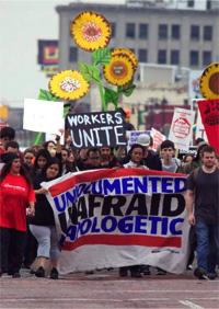 Undocumented Unafraid Unapologetic